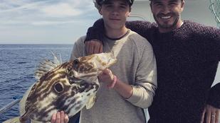 David Beckham helyett mindenki a fiával akar közös fotót