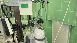 Fordítva kötötték be a csöveket a műtőben, belehalt egy beteg