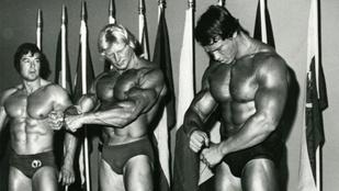 Schwarzenegger egykori riválisa így néz ki ma