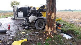 Fának csapódott egy nyerges vontató Iharos közelében
