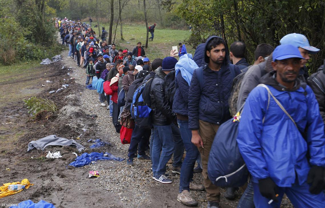 Horvátországból érkező menekültek a magyar határnál, október 16-án.