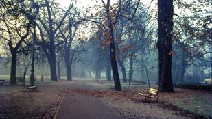 1977 ősze gyönyörű volt Budapesten