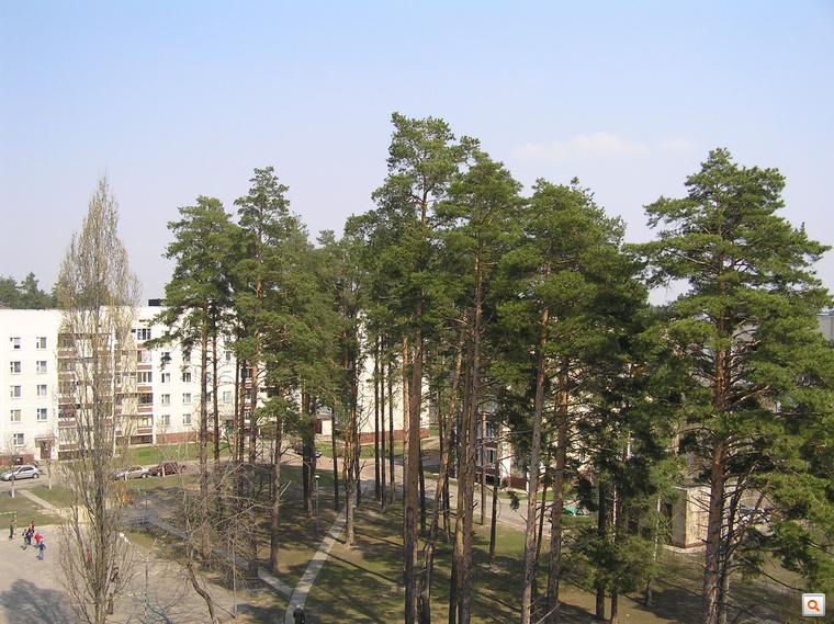 Moszkva-városnegyed