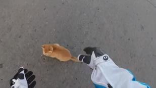 Motoros mentette meg a cuki kiscicát, és ezt le is videózta