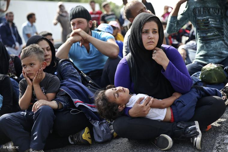 Menekültek Horgosnál szeptember 15-én