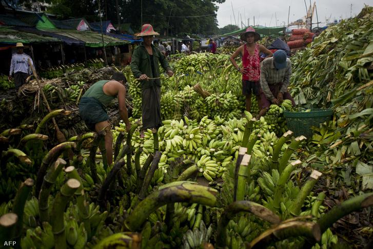 Banán kereskedők a ranguni piacon 2015. októberében.