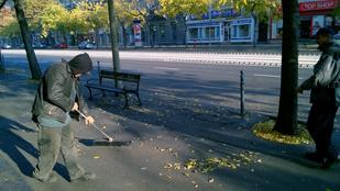 A hajléktalan, akit imádnak a környékén