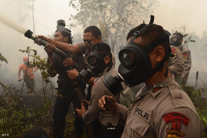 Tűzoltók dolgoznak egy égő tőzegföldön Borneó szigetén, Kalimantan tartományban 2015. szeptember 24-én