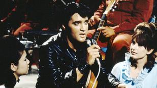 Elvis Presley versbe szedte, hogyan ölt meg egy madarat