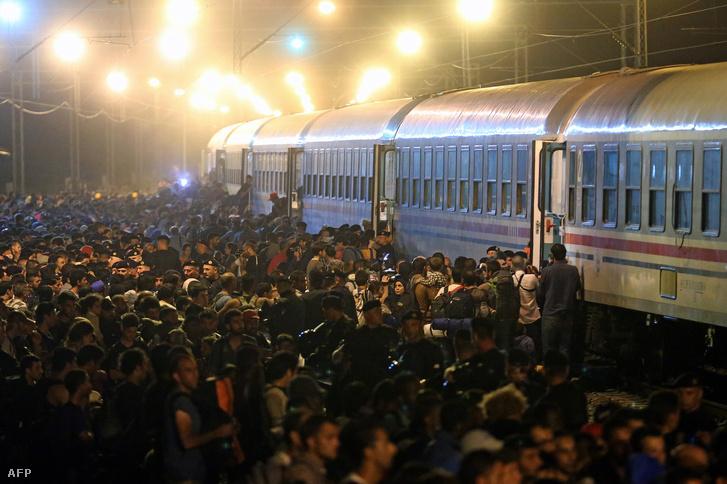 Menekültek várakoznak a szerb-horvát határnál, hogy tovább szállítsák őket a magyar határhoz, 2015. szeptember 18-án.