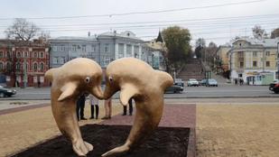 Meleg delfinek miatt áll a bál egy orosz városban