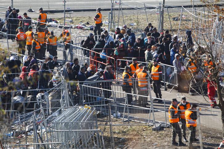 Menekültek várakoznak kordonok között az ausztriai Spielfeld és a szlovén Sentilj közötti határátkelőhely osztrák oldalán 2015. november 4-én.