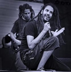 Csongor Bálint - Subscribe