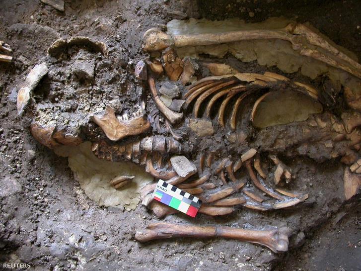 A Cambridge University dátummegjelölés nélküli felvétele a 10.000 éves csontvázról, amit Nyugat-Grúziában, a Kotias Klde szikla közelében találtak.