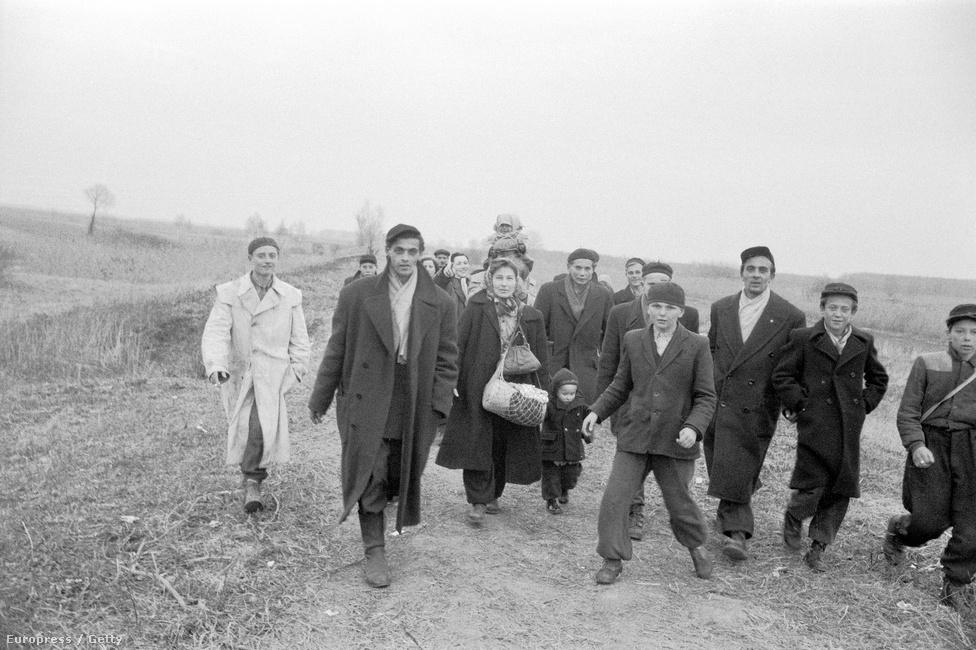 A magyar menekültáradat a szovjet tankok hazánkba érkezésével egy időben, november 4-én indult meg igazán. Azon a vasárnapon körülbelül hatezer menekült érkezett Ausztriába. November 23-án lépték át a határt a legtöbben, aznap 8537 magyar menekültet regisztráltak az osztrákok, írja Soós Katalin történész az Ausztriában működőMagyar Menekültügyi Segítőszolgálat(Ungarischer Flüchtlingshilfdienst) 1958. májusi beszámolójára hivatkozva.