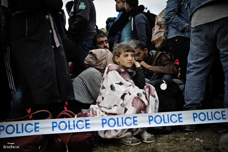 Menekültek Röszkén szeptember 7-én