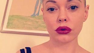 Rose McGowan két év házasság után válik