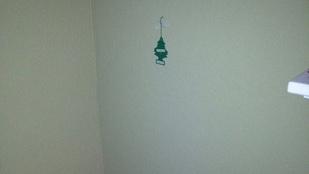 Béna lett a karácsonyfa? Nyugi, az övékénél nem lehet rosszabb!