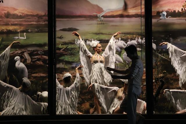 A hattyúk tava - Pécsi Balett