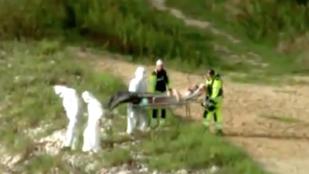 Szakállas férfisellőt halásztak ki egy lengyel tóból