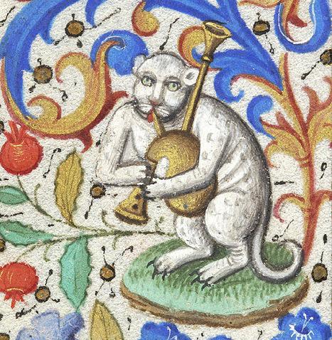 Dudán játszó macska