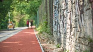 Elfogták a Margitszigeten futó nő támadóját