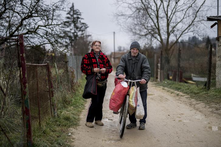Bartáék a lányuk udvarán építettek egy faviskót, miután végleg kilakoltatták őket Ötödik utcai otthonukból.