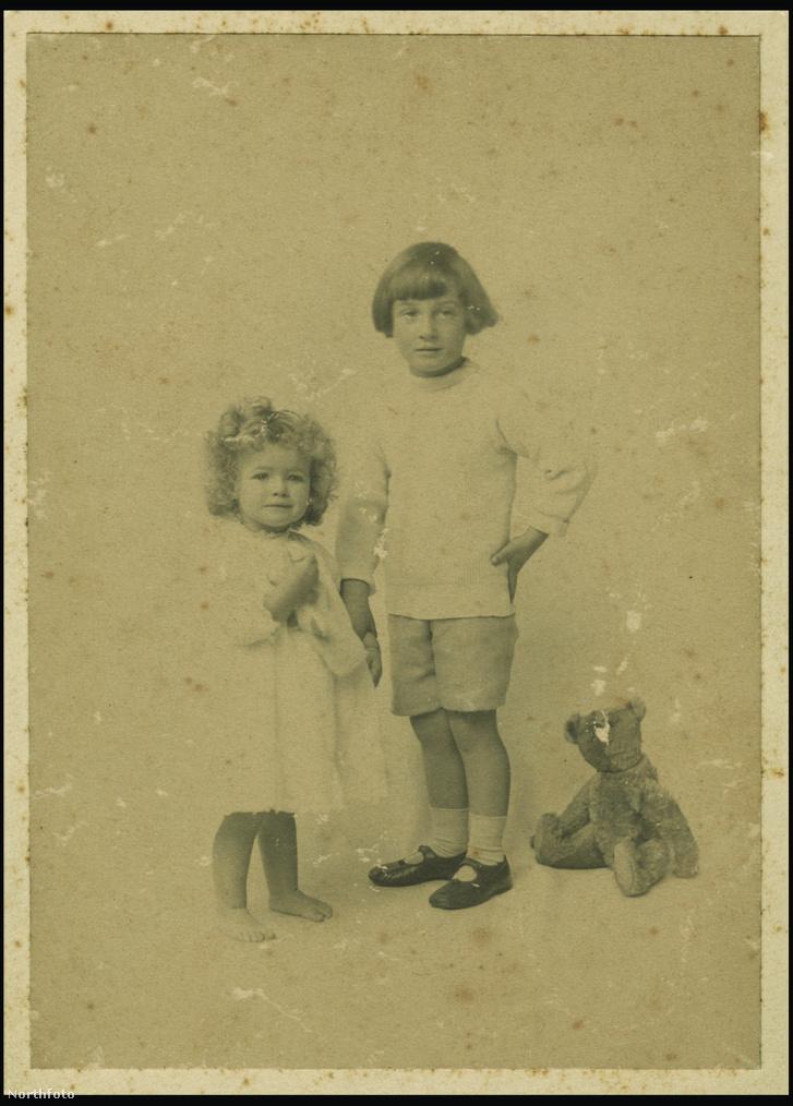 A maci, ami alapján Shepard megrajzolta Micimackót, két gyermeke, Graham és Mary egyik kedvenc játéka volt.