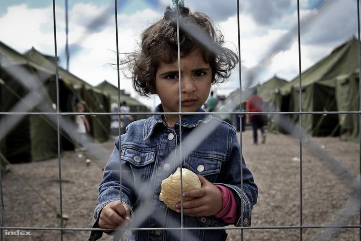 Képünk illusztráció, a röszkei menekülttáborban készült