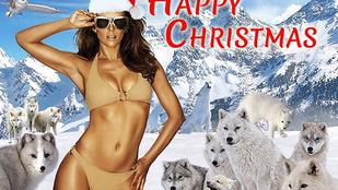 Elizabeth Hurley fenékstírölő farkasokat photoshoppolt magának