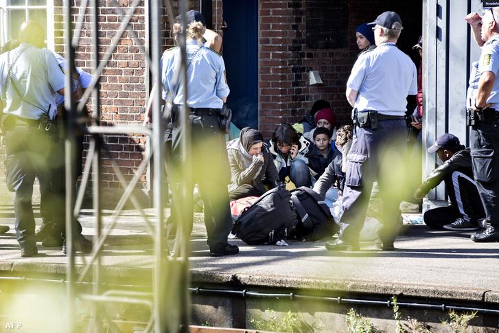 Dán rendőrök tartóztatnak fel menekültek a dán-német határon Padborgban