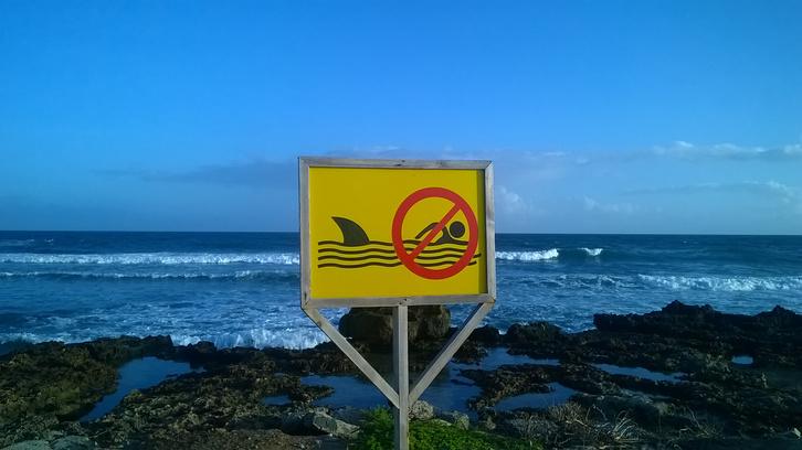 Cápaveszély – fürödni tilos!