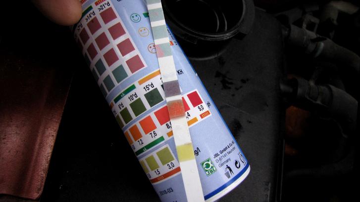 Így néz ki egy tökéletes állapotú, hosszú élettartamú fagyálló tesztcsíkja: pH 8,4