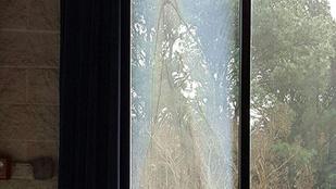 Szűz Máriát látták egy ablakban