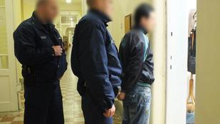 Vádemelést javasolnak a testvérpárt megerőszakoló pocsaji gyilkos ellen