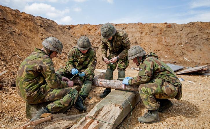 A Holland Királyi Hadsereg 13. Gépesített Dandár tűzszerészei a Várpalota Challange 2014 elnevezésű gyakorlat keretében robbantási feladaton vesznek részt az MH Bakony Harckiképző Központ újdörögdi gyakorlóterén 2014. március 27-én.