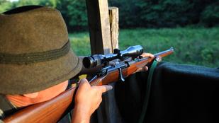 A gazdija mellől lőtte ki egy vadász a kutyát Tatabányánál