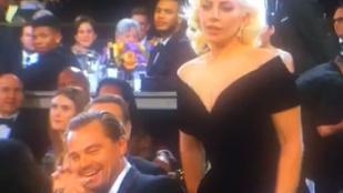 Leonardo DiCaprio reakciója Lady Gagára: megfizethetetlen