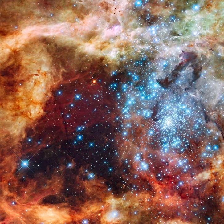 A 30 Doradus jelű óriás csillagkeletkezési régió a Tarantula-ködben, a Nagy Magellán-felhőben. Talán a Nap is hasonló helyszínen született.