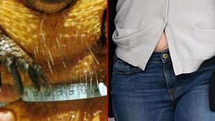 Jennifer Garner vagy ez a cuki tatu szedett fel többet magára?