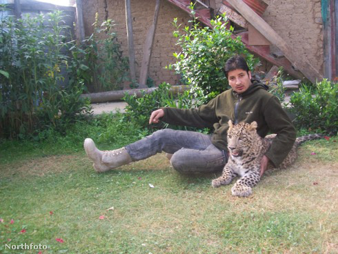 tk3s bm leopard cubs 02404146