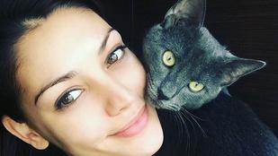 Kulcsár Edina macskája még sosem nézett ki ilyen előnyösen
