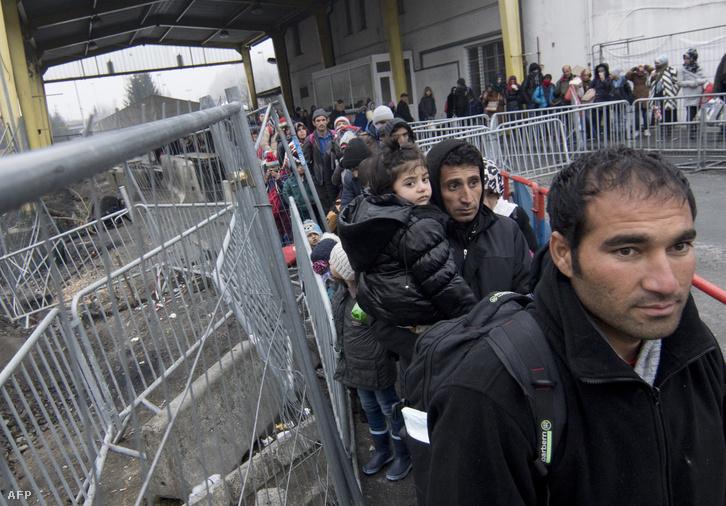 Érkező menekültek az osztrák-szlovén határon