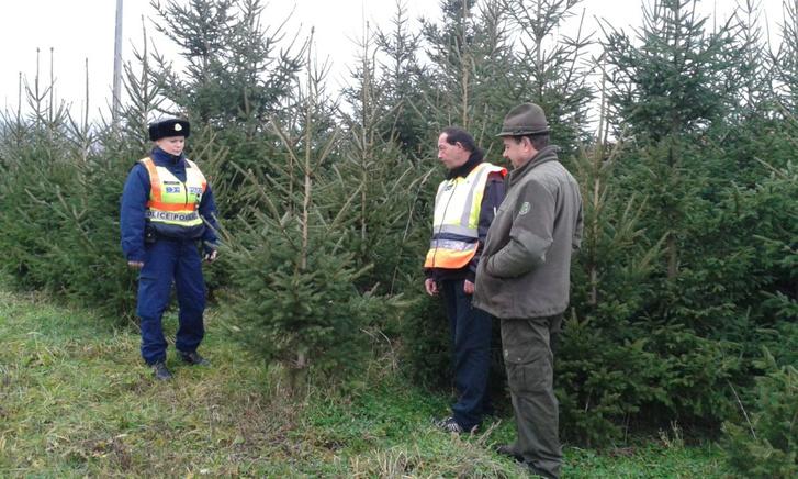 A rendőr, a polgárőr és az erdész fokozottan védi az erdőt Nógrád megyében, hogy a szegények ne vigyék haza eltüzelni a fákat