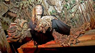 Meghalt az indonéz faember