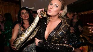Kígyó, mellek, Scooter és egy Obama – felismer mindenkit?