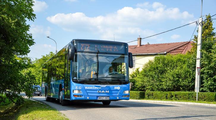 A lengyel gyártású MAN-ből több mint 200 fut a fővárosi utakon
