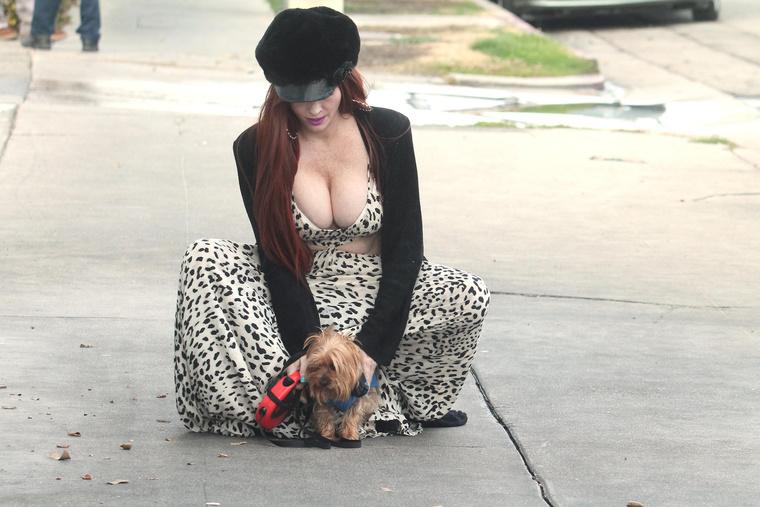 Phoebe Price kutyasétáltatás közben is dolgozik