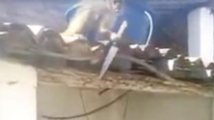 Nincs rosszabb a késsel hadonászó részeg majomnál