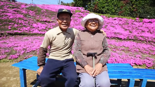 Illatos virágmezőt ültetett vak feleségének